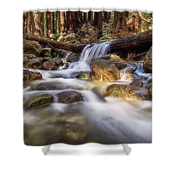 Log Falls On Limekiln Creek Shower Curtain