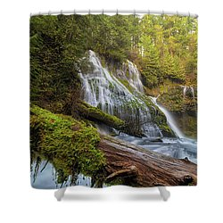 Log Jam By Panther Creek Falls Shower Curtain