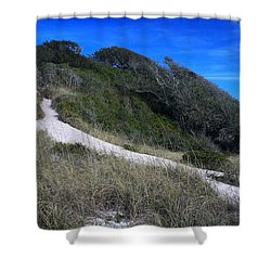 Langdon Battery Shower Curtain