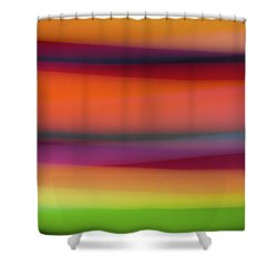 Lollipop Nostalgia Shower Curtain
