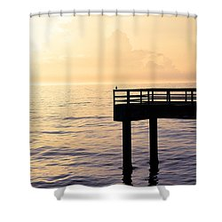 Lone Bird At Morning Shower Curtain by Marilyn Hunt