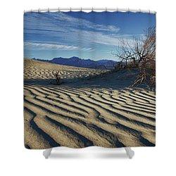 Lone Bush Death Valley Hdr Shower Curtain by James Hammond