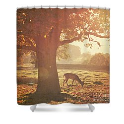 Shower Curtain featuring the photograph Lone Deer by Lyn Randle