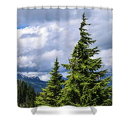 Lone Fir With Clouds Shower Curtain