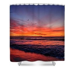 Lone Gull Shower Curtain