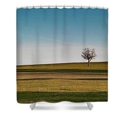 Lone Hawthorn Tree II Shower Curtain