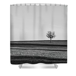 Lone Hawthorn Tree Iv Shower Curtain by Helen Northcott