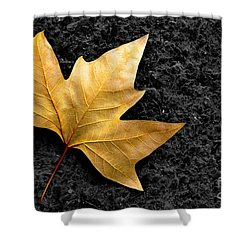 Lone Leaf Shower Curtain by Carlos Caetano