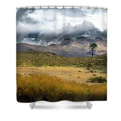 Shower Curtain featuring the photograph Lone Pine High Desert Nevada by Frank Wilson