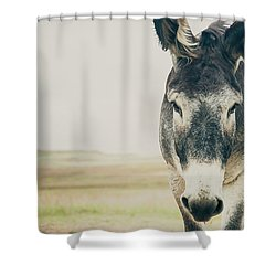 Lone Ranger Shower Curtain by Cynthia Traun