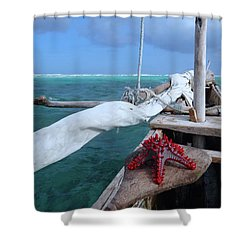 Lone Red Starfish On A Wooden Dhow 1 Shower Curtain