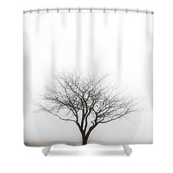 Lone Reflection Shower Curtain