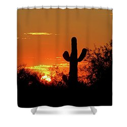 Lone Saguaro Sunrise Shower Curtain