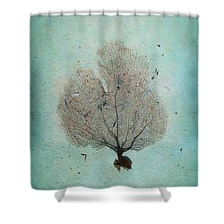 Lone Sea Fan Shower Curtain