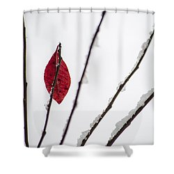 Lone Survivor Shower Curtain