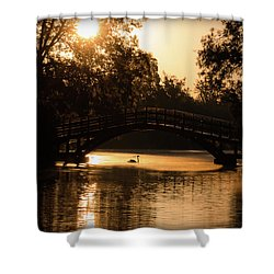 Lone Swan Up For Dawn Shower Curtain