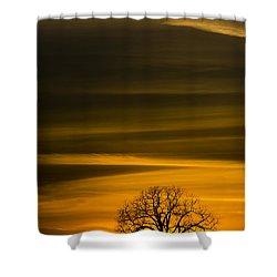 Lone Tree - 7064 Shower Curtain
