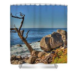 Lone Tree California Coast Shower Curtain by James Hammond