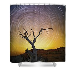 Lone Tree Shower Curtain