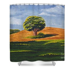 Lone Tree Shower Curtain by Mendy Pedersen