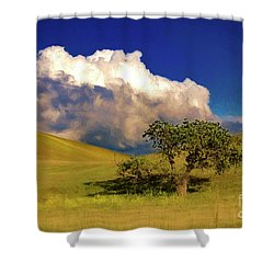 Lone Tree With Storm Clouds Shower Curtain