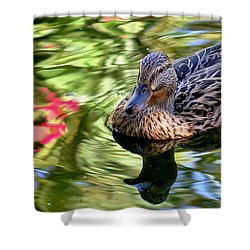 Shower Curtain featuring the photograph Lonely Duckie by Elaine Malott