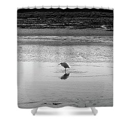 Shower Curtain featuring the photograph Lonely Heron by Nicholas Burningham