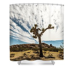 Lonely Joshua Tree Shower Curtain by Amyn Nasser
