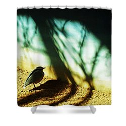 Shower Curtain featuring the photograph Lonely Little Bird by Shawna Rowe