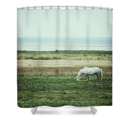 Shower Curtain featuring the photograph Lonely Pony by Karen Stahlros