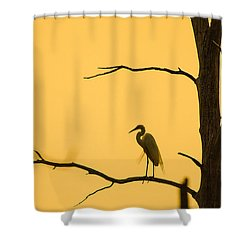 Lonely Silhouette Shower Curtain