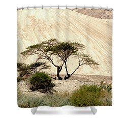 Lonely Tree Shower Curtain by Arik Baltinester
