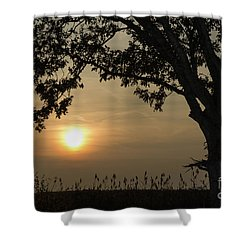 Lonely Tree At Sunset Shower Curtain