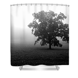Lonely Tree Shower Curtain by Deborah Scannell