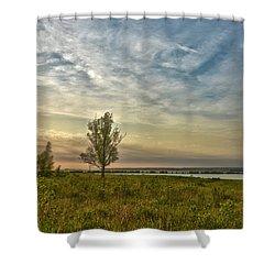 Lonely Tree In Dintelse Gorzen Shower Curtain