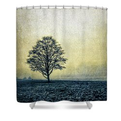 Shower Curtain featuring the photograph Lonely Tree by Marion McCristall