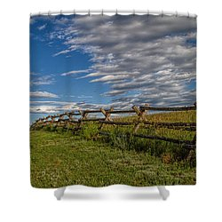 Lonesome Road Shower Curtain by Alana Thrower