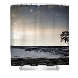 Lonesome Tree On A Hill IIi Shower Curtain by David Sutton
