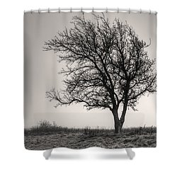 Lonesome Tree Shower Curtain by Tamyra Ayles
