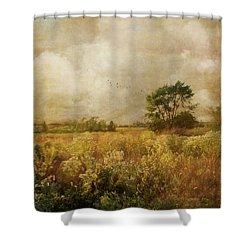 Long Ago And Far Away Shower Curtain