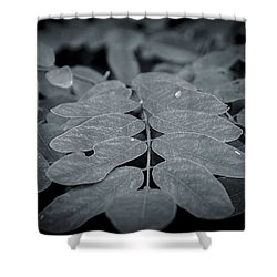 Long Angle Shower Curtain