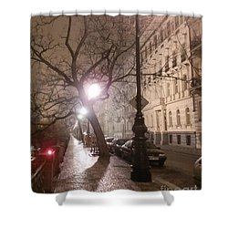Long Cobblestone Street Of Prague Shower Curtain