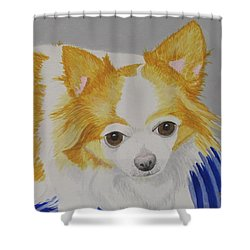Long-haired Chihuahua Shower Curtain by Hilda and Jose Garrancho