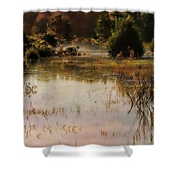 Long Pond Misty Morning Shower Curtain