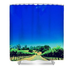 Long Road Shower Curtain by Gillis Cone