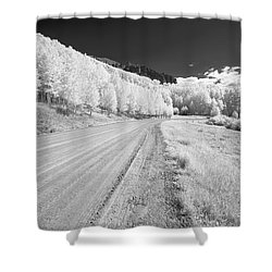 Shower Curtain featuring the photograph Long Road In Colorado by Jon Glaser