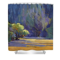 Long Shadows Shower Curtain