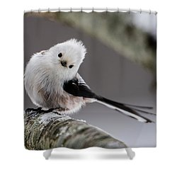 Long-tailed Look Shower Curtain by Torbjorn Swenelius