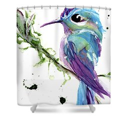 Shower Curtain featuring the painting Long-tailed Sylph by Dawn Derman