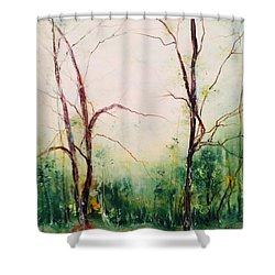 Long Walk Home Shower Curtain by Robin Miller-Bookhout